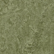 Pine Forest Marmoleum Linoleum Click Single Tile Floating Flooring - Green Home Floors