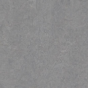 Eternity Forbo Marmoleum Linoleum Cinch Loc Planks 12x36