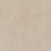 Silver Birch Forbo Marmoleum Linoleum Cinch Loc Planks 12x36