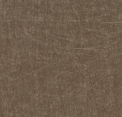 Forbo Project Vinyl Eternal Material 13762 Brushed Bronze